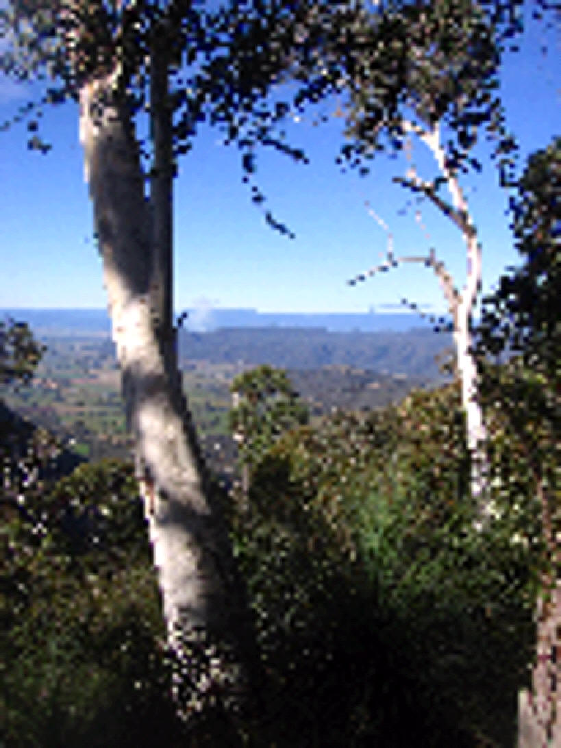 Campbell's Lookout